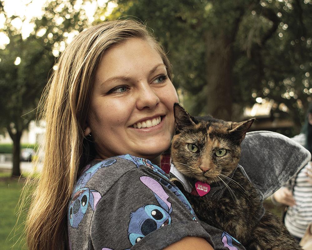 Cat Turk