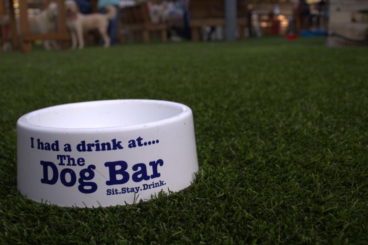 Dog Bar Bowl