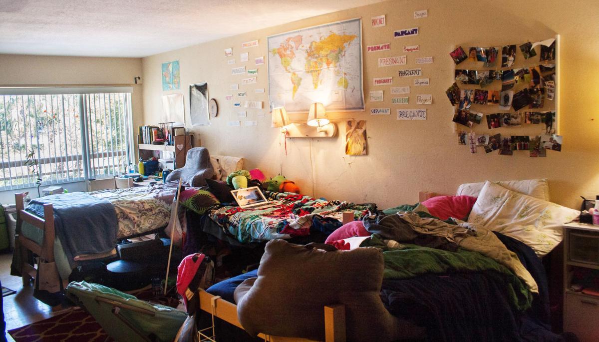 Eckerd Dorm Rooms