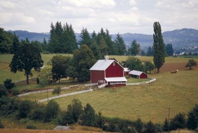 Rural Oregon barn