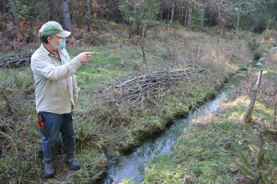 Couple restores wetland prairie, improving fire resiliency on 80 acres