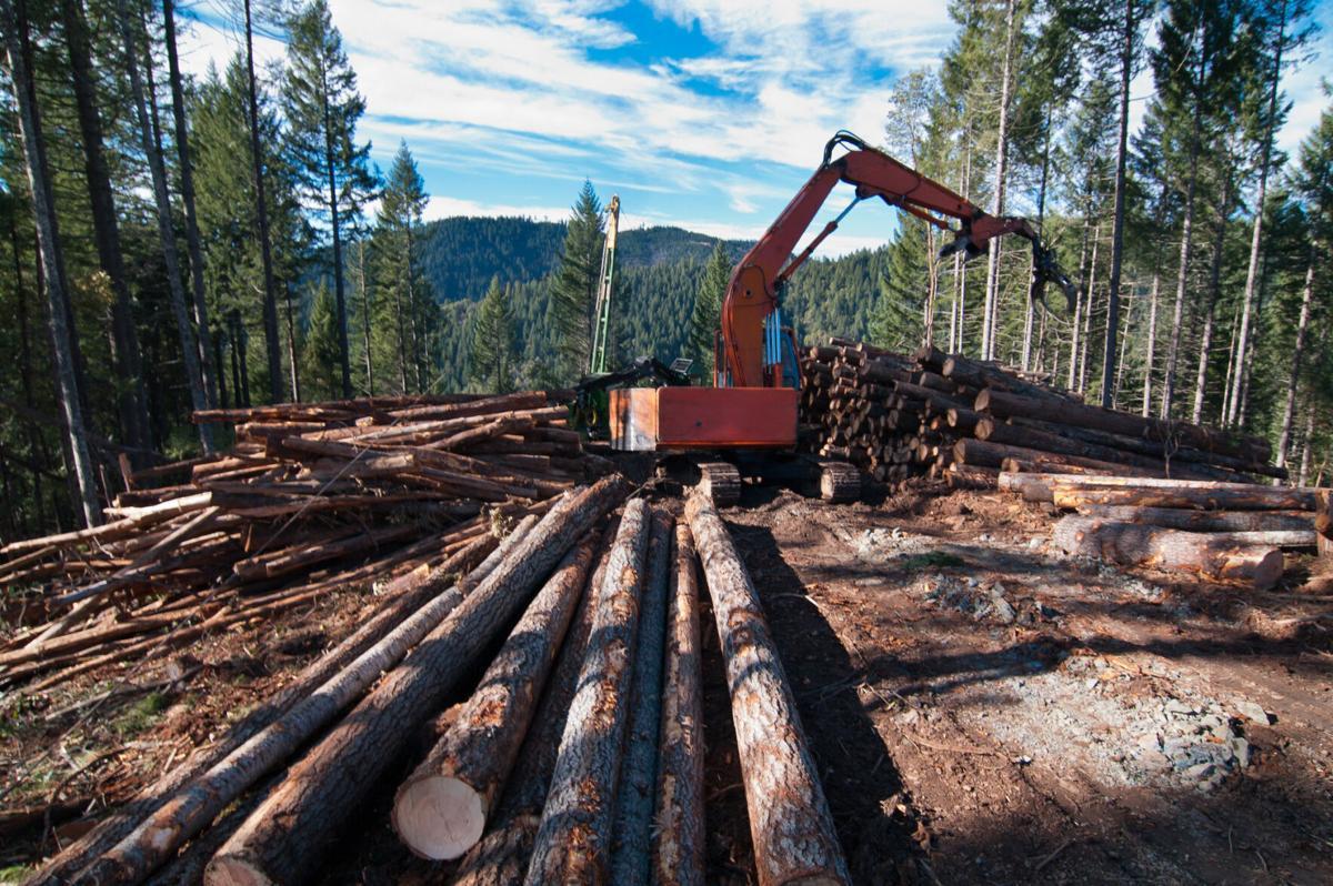 Mechanized forestry