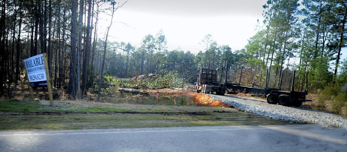 Land clearing Eagle Landing