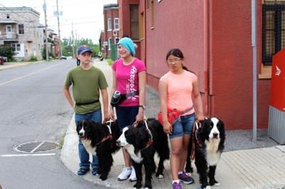 MIRA dogs and children