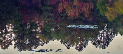 Southern Pines Lake Plagued by Long History of Sewage Spills