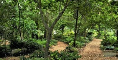 Juniper Level Gardens