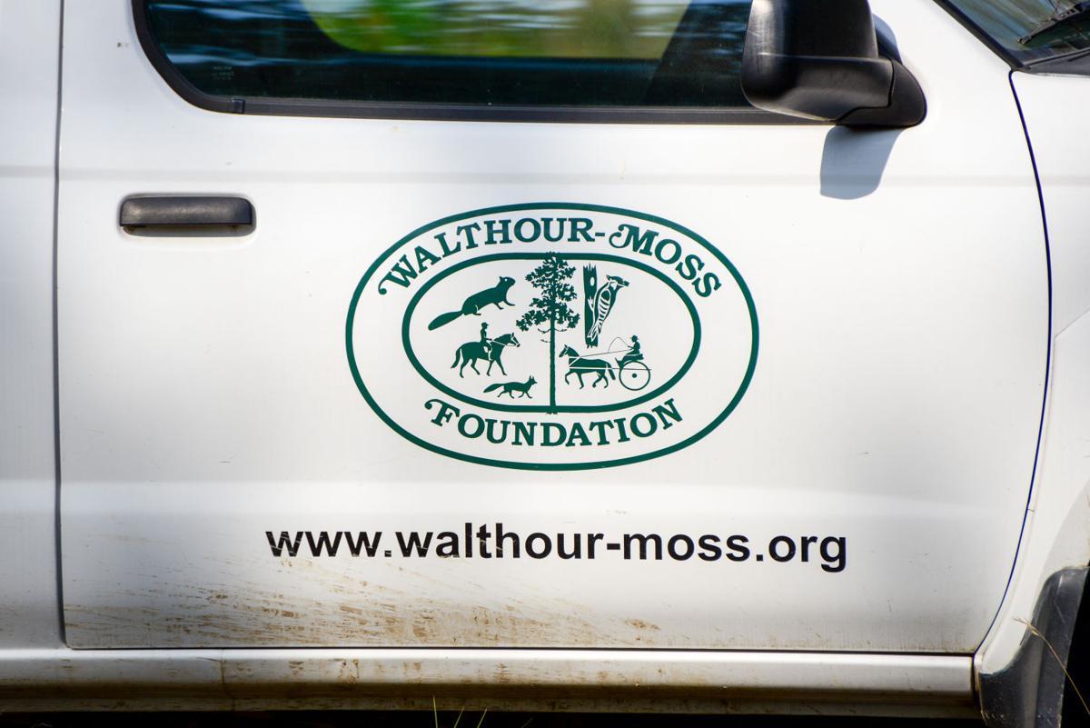 Walthour-Moss Foundation.jpg