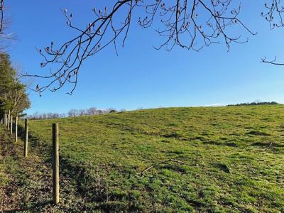 TRLT 195 Acres Conservation Easement