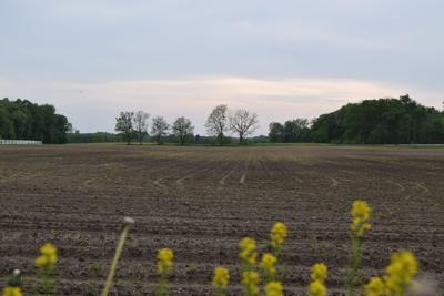 Weather continues to not cooperate, delays crop planting