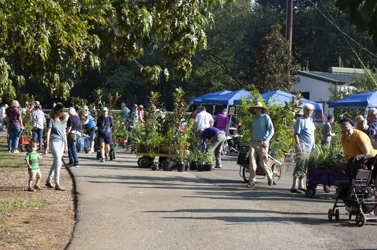 Fabulous Fall Festival Plant Sale