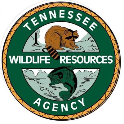 TWRA schedules winter trout stocking