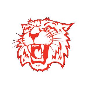 Sports_Whitko_Logo