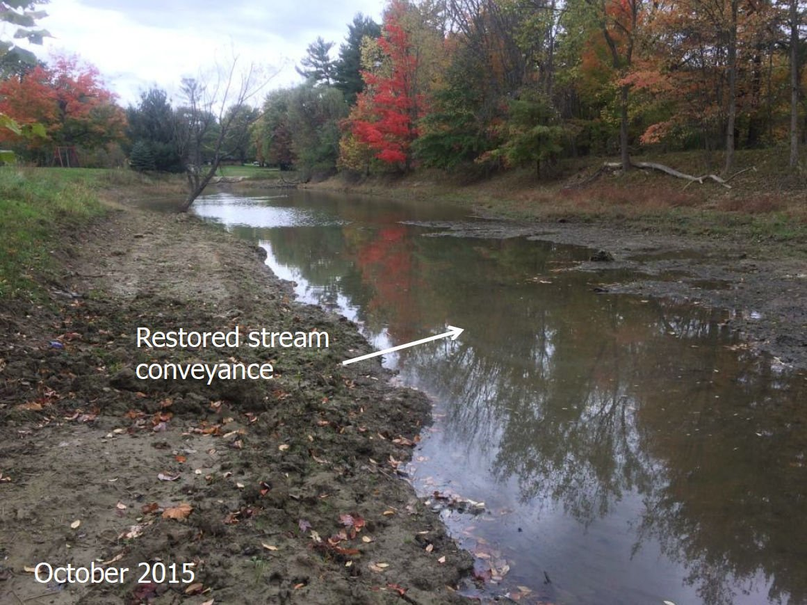 Abbey detention basin after