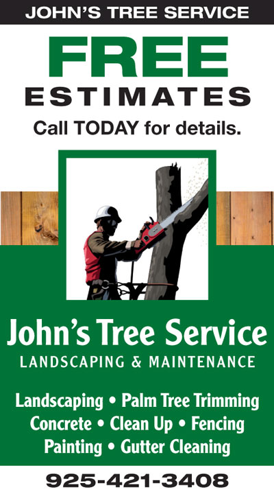 FREE Estimates at John's Tree Service