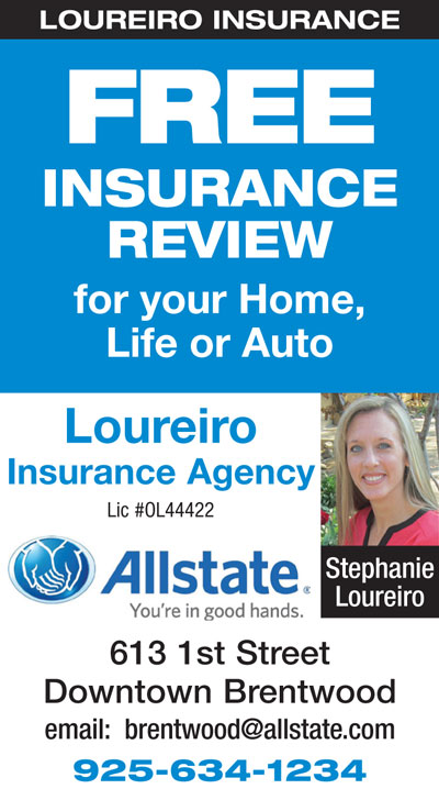 FREE Insurance Review at Loureiro Insurance Agency