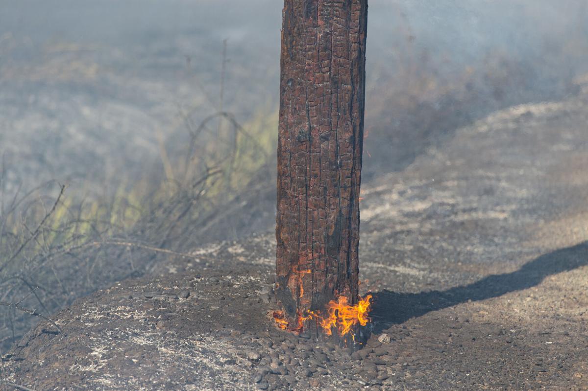 Orwood Road fire
