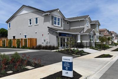 Terrene Homes development
