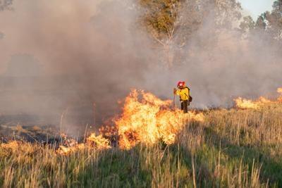 Discovery Bay Vegetation Fire
