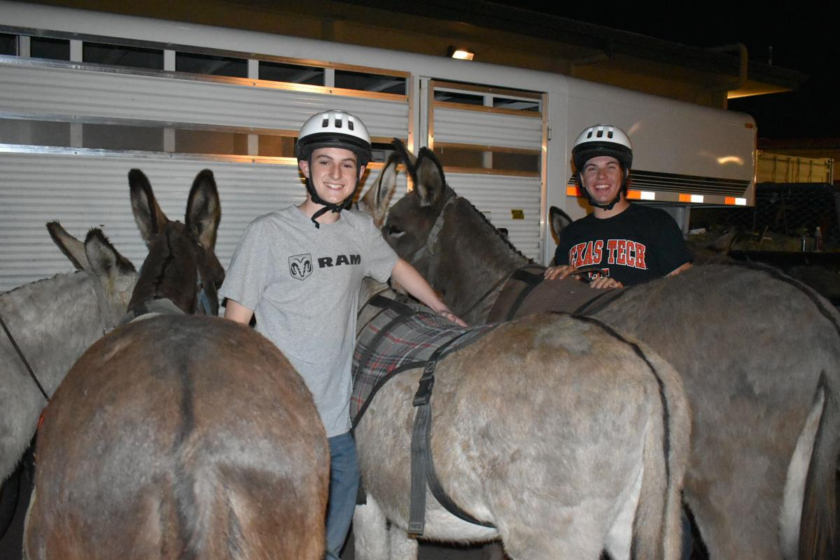 Donkey Basketball 2020