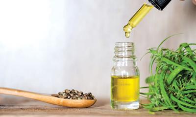 CBD oil and arthritis