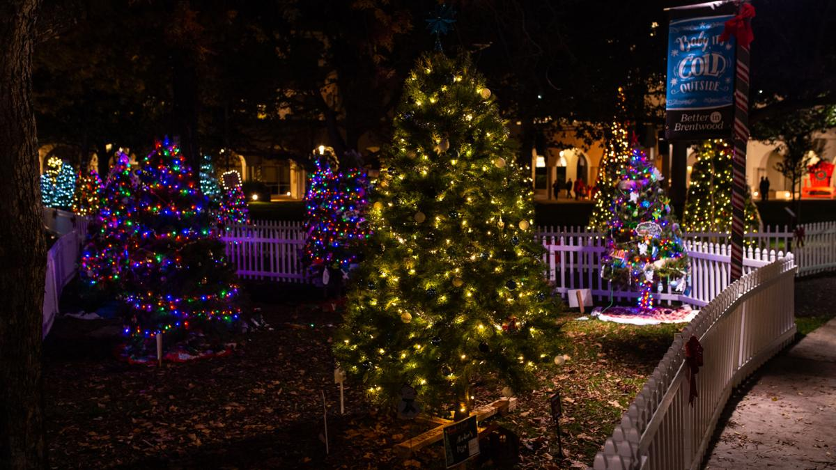 [Photos] Deck the Trees in Brentwood City Park