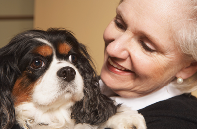 Things to consider when adopting a pet later in life