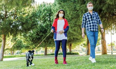 Natural tick repellents to protect pooches