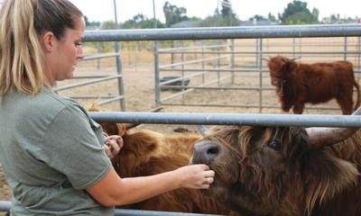 Broken Road Farm to move out of state