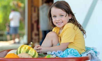 A bounty of pumpkins