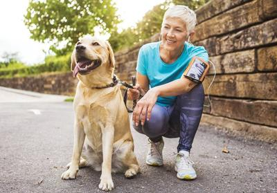 Lost pet prevention