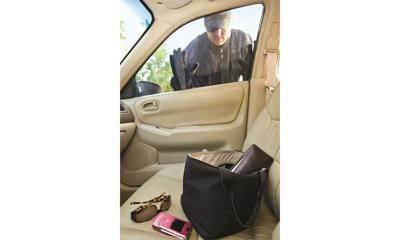 Auto theft_interior