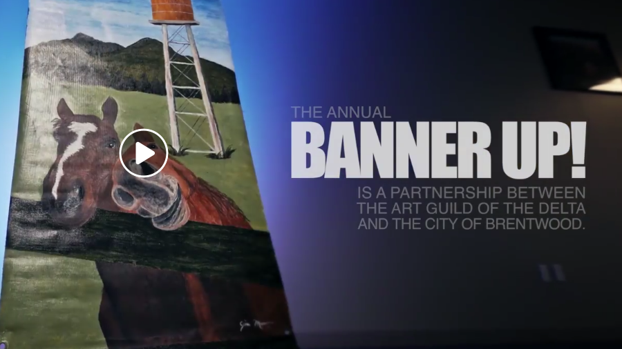 [Video] Banner Up! Gala Benefit Auction