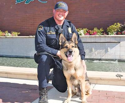 Beloved K-9 officer Koda retires