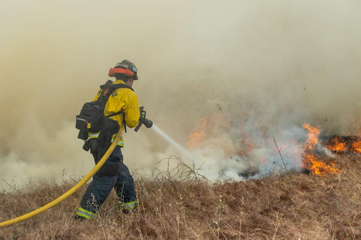 Byron vegetation fire