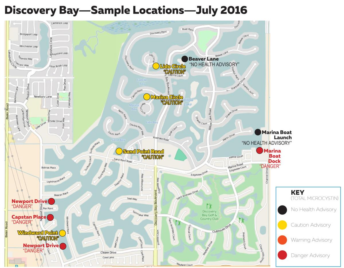 Blue-green algae tests positive in Discovery Bay: EPA issues ... on