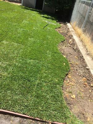 Pic 8 John's Tree Service - Lawn / Grass Installation
