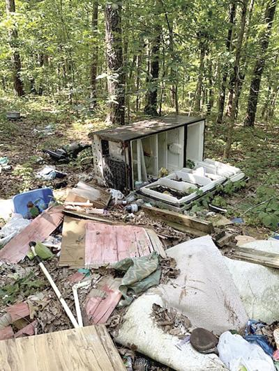 Dump prior to the cleanup - 2020
