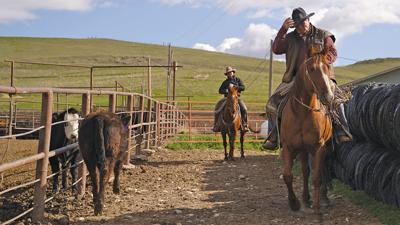Padlock Ranch Destination Sheridan