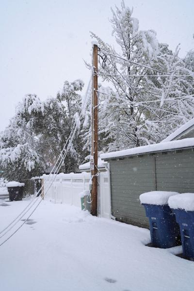 Snow Standalones 005web.jpg