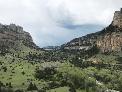 06-10-21 Tensleep Canyon stockweb.jpg