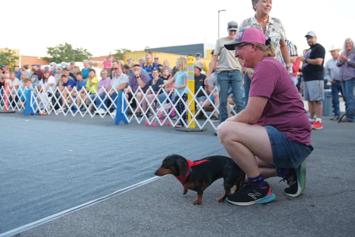 09-07-21 wiener dog races 1web.jpg