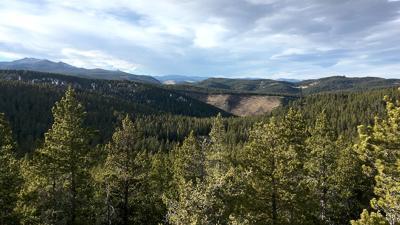 Penrose Trail Story stock