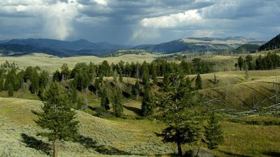 Yellowstone scenery stock