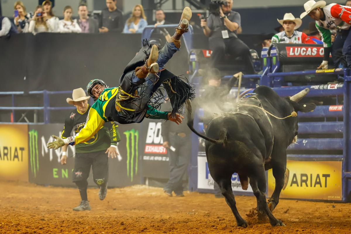 Bull riding, a new art installation and early holiday programming in this week's To-Do List