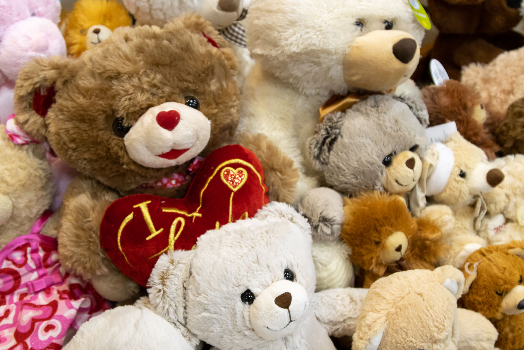 UTA Society for Human Resource Management supports local stuffed animal donation drive