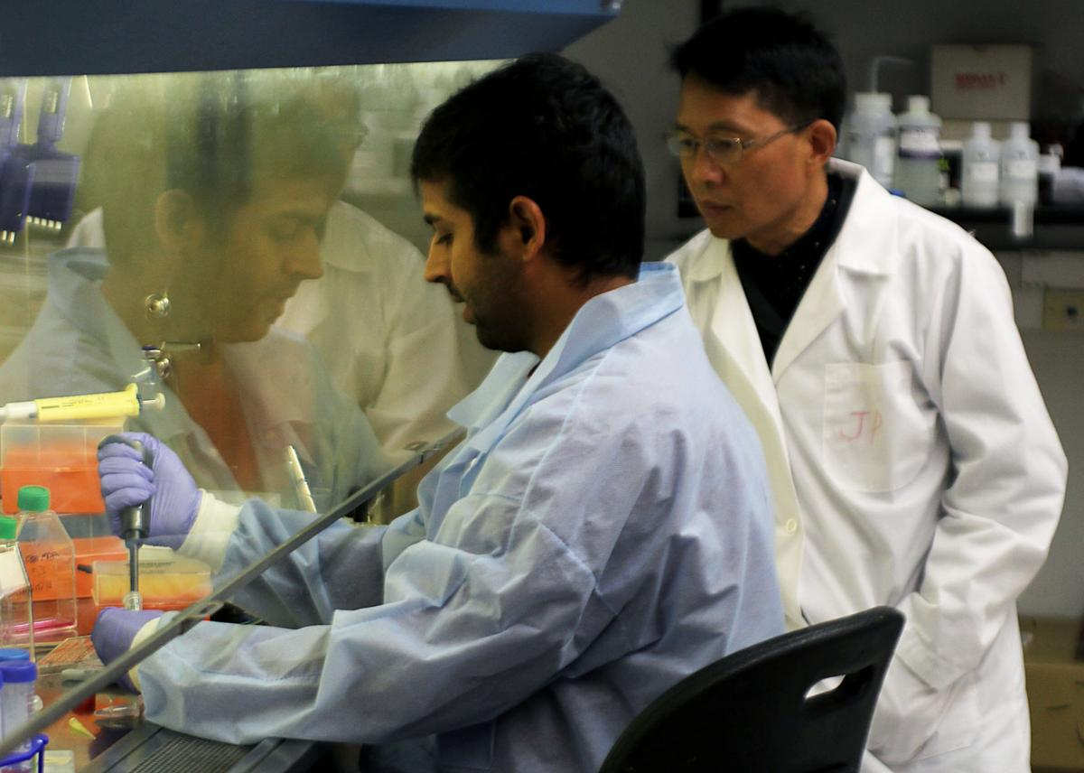 Professor researches nanoparticle to make cancer treatment safer