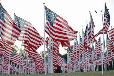 UTA ranks No. 1 four-year institution for veterans in Military Times