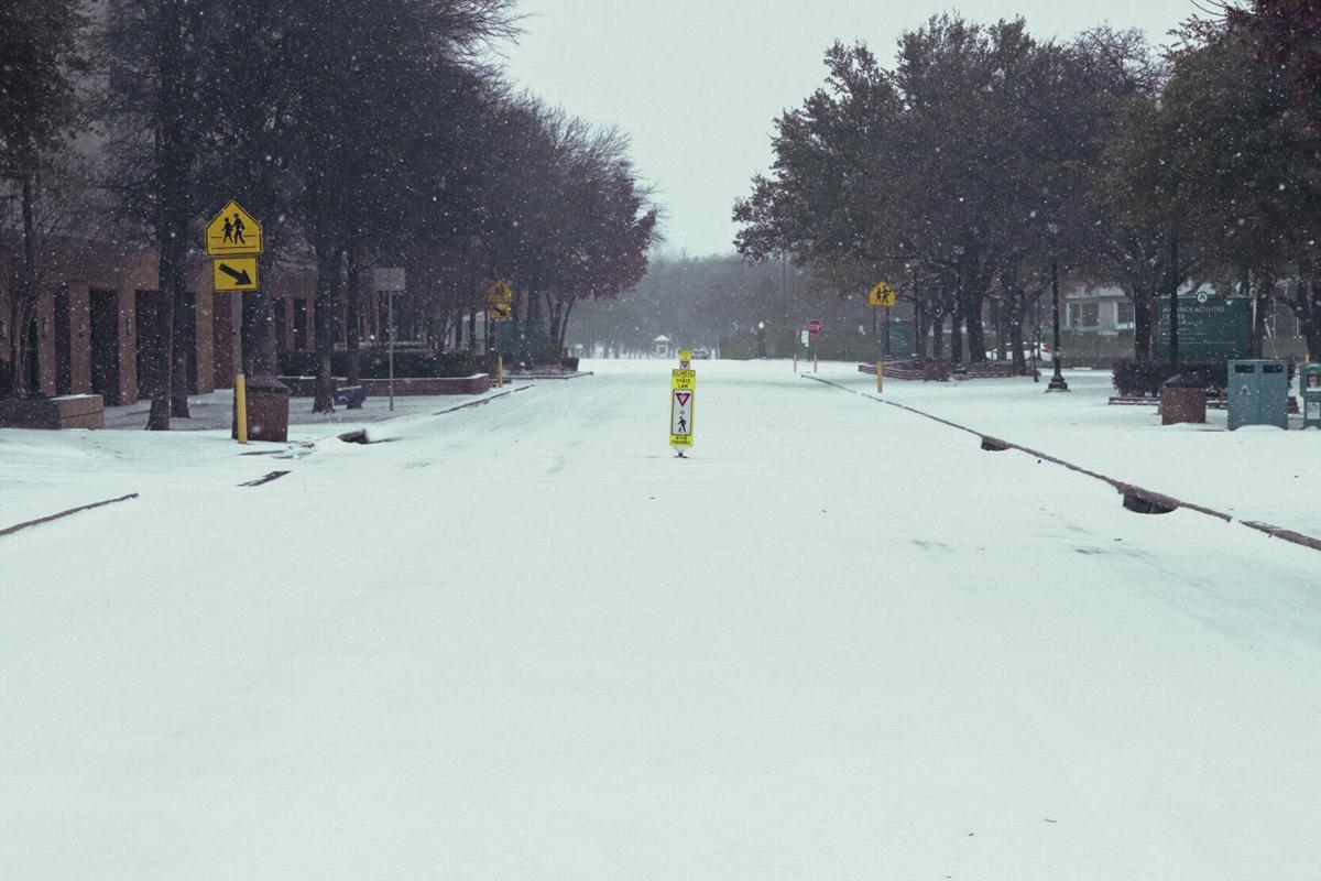 Photos: UTA students take advantage of the snowfall blanketing campus