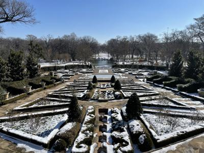Here's how the winter storm is affecting local gardens