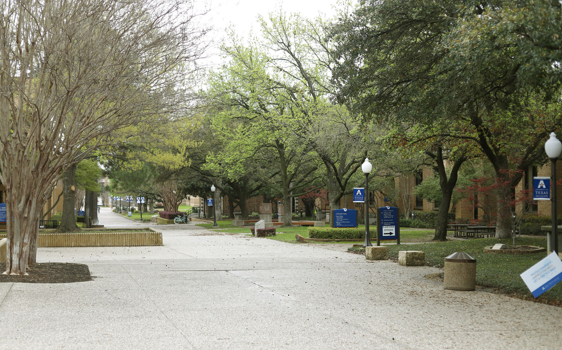 UTA to conduct Maymester, summer classes online only